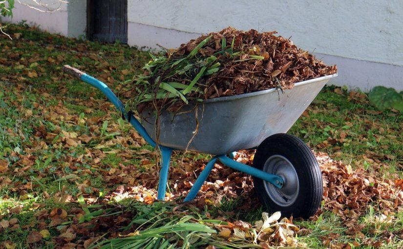 Wat is de beste tijd om in de tuin te werken?